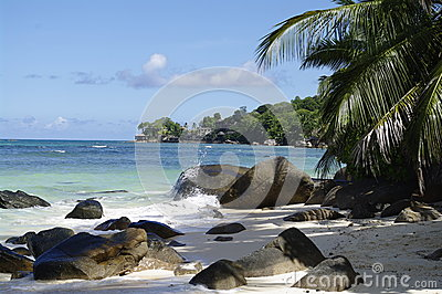 Shady place under Palm trees at Beau Vallon beach, Seychelles