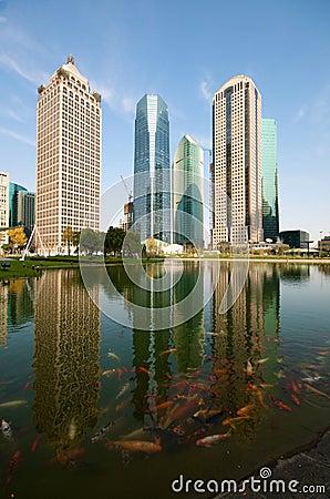Shanghai Century Avenue Skyline