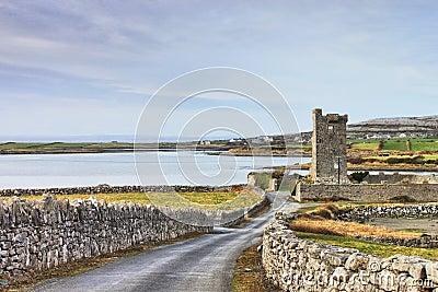 Shanmuckinish Castle, The Burren,Ireland.