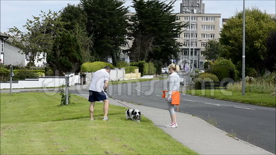 Shannon, Ireland - Sept 5, 2015: Couple walking their dog and following the law by cleaning up after their dog poop with a poop s stock videobeelden
