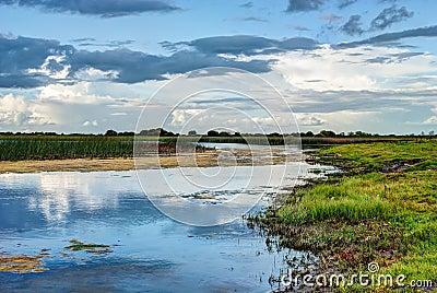 Shannon river landscape