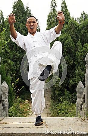 Free Shaolin Boxing.China Stock Photos - 6763393