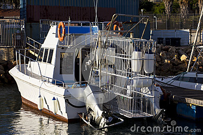 Shark cage diving boat