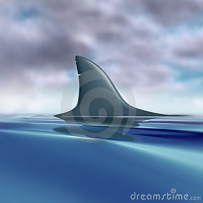 Free Shark Fin Above Water Royalty Free Stock Images - 19049249