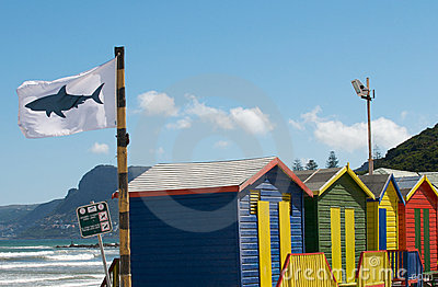 Shark Flag Warning Editorial Photography