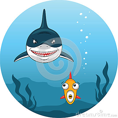 Free Shark Hunting For Small Fish Royalty Free Stock Photography - 30611177