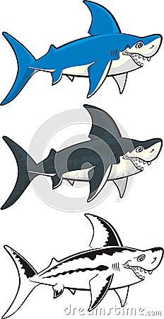 Shark - marine predator