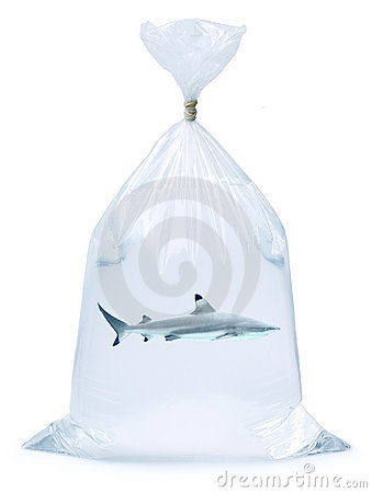 Shark Plastic Bag
