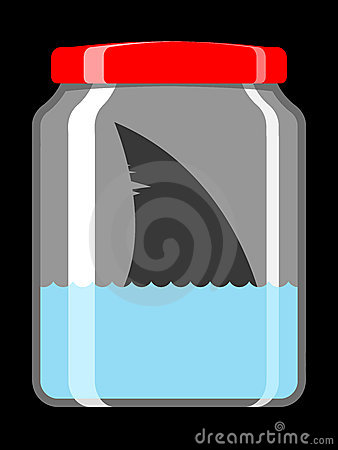 Shark in preserving jar