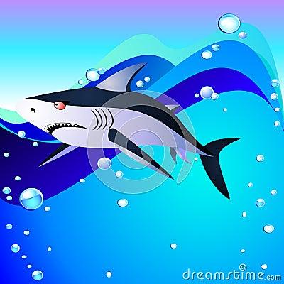Shark and sea