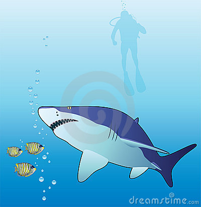Shark, tropical fishes and scuba diver