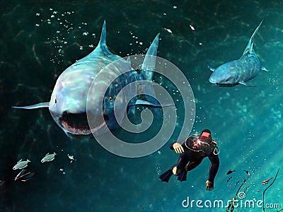Sharks menace