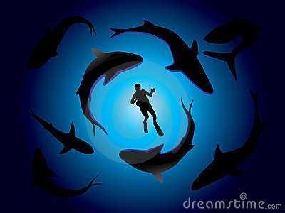 Sharks and scuba diver
