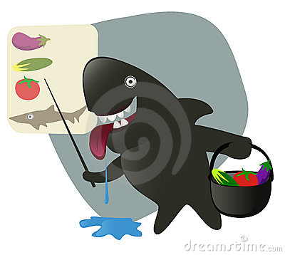 Sharky shark collecting ingredients for the lunch.