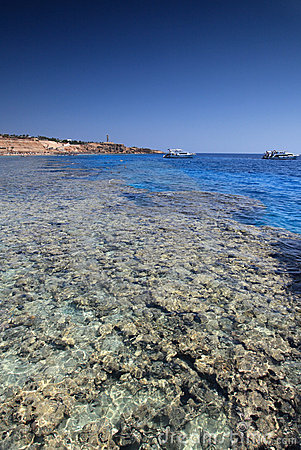 Sharm el Sheikh coast