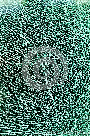 A shattered glass pane in the car
