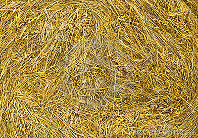 Sheaf of hay background