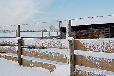 Shed and fence covered in snow