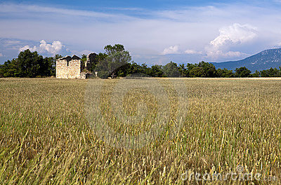 Shed in Provence