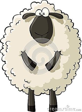 Free Sheep Stock Image - 23988751