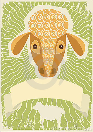 Sheep background for text.