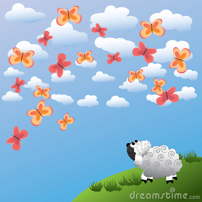 Sheep and butterfly
