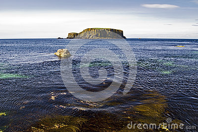 Sheep Island from the sea weed shoreline, Antrim Coast