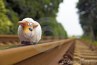 Sheep on rails