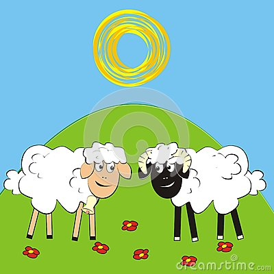 Sheep and ram