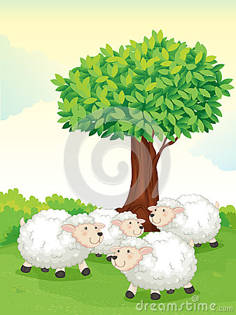 Free Sheeps Under Tree Royalty Free Stock Image - 25770806