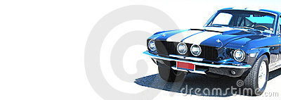 Shelby Web Banner