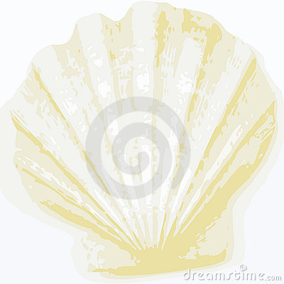 Free Shell Background (vector) Royalty Free Stock Images - 6067549