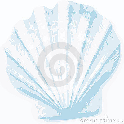 Shell background (vector)