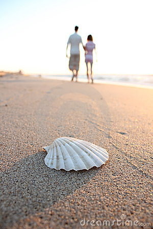 Shell and couple in love