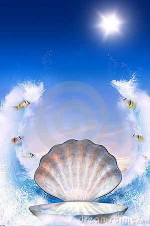 Free Shell For Aphrodite Royalty Free Stock Image - 13609096