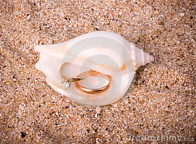 Shell with golden wedding rings