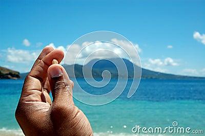 A shell in hand by the Ocean / sea / beach /tropic