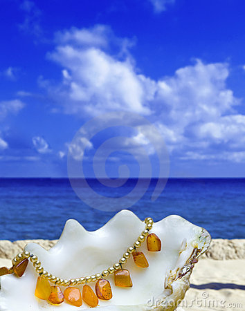 Free Shell Lays With Amber Bead On Background Of Ocean Stock Images - 13379954