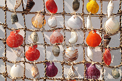 Shell on string