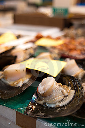 Shellfish Sale