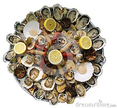 Shellfish seafood platter