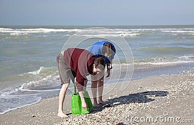Shelling on Sanibel Island, Florida