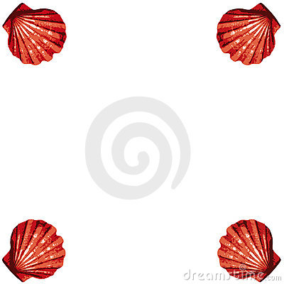 Shells frame (vector)