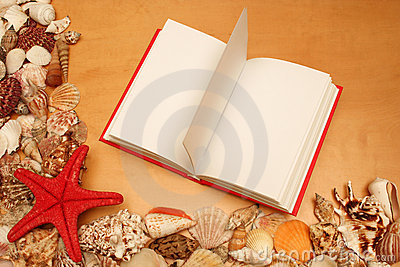 Shells and open book