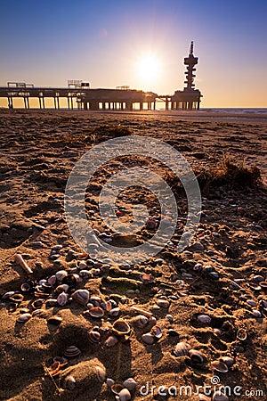 Shells pier
