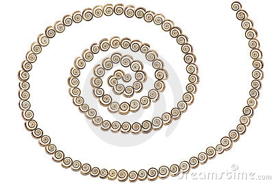 Shells - Spiral
