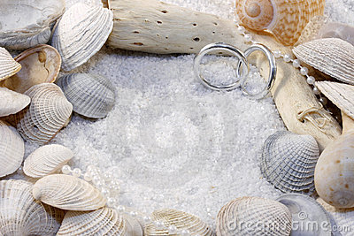 Shells And Wedding Rings Royalty Free Stock Photos - Image: 5636898