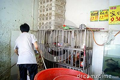 Shenzhen china: the supermarket chicken stalls Editorial Stock Image