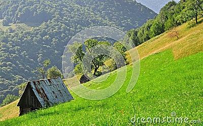 Shepherd cottage