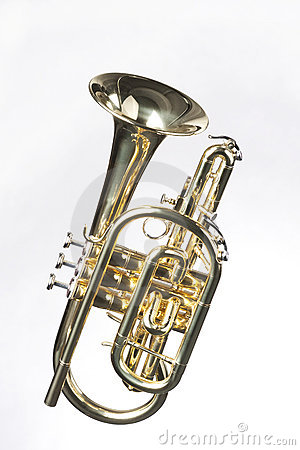 Sheppards's Crook Cornet On White